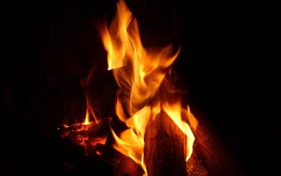 Bruciate il mio legno