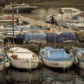 isola d'Ischia, barche di pescatori