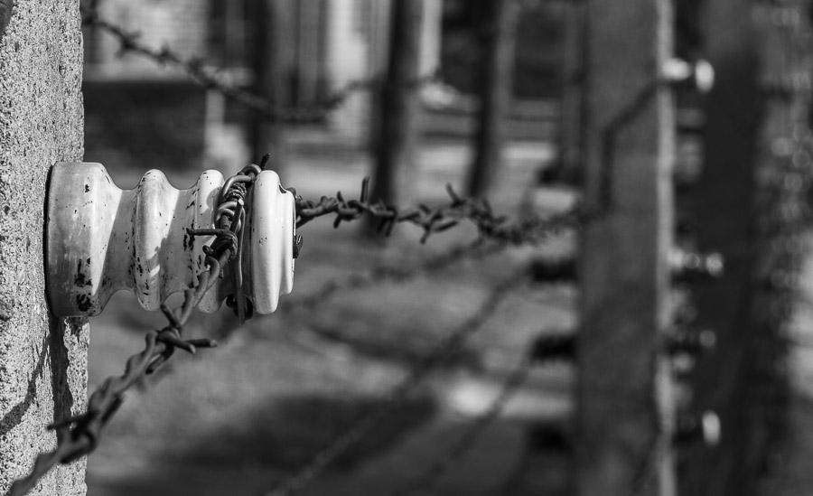 Auschwitz filo spinato
